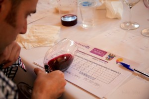 De vinos por Villena en la segunda edición de Vinouvelle
