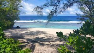Atiu, un paraíso en la Polinesia neozelandesa para los que buscan el turismo más aventurero