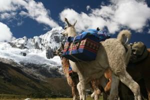 Turismo Rural Comunitario o cómo descubrir el Perú más auténtico