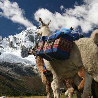 Llamatrek - paisaje ©Mincetur