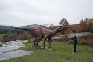 Siguiendo las pisadas de los dinosaurios en Burgos