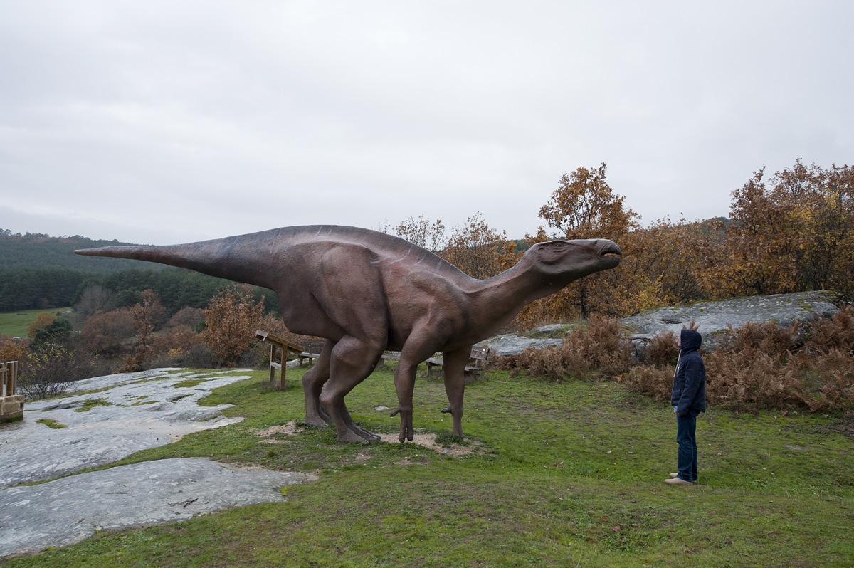 Siguiendo las pisadas de los dinosaurios en burgos el for Oficina de turismo burgos