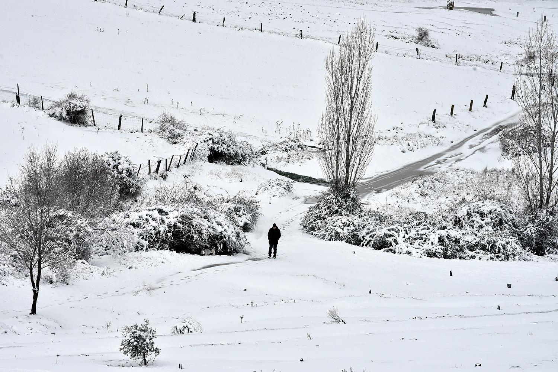 Un hombre camina con su perro en las cercanías de Segovia. ©El Viajar es un Placer