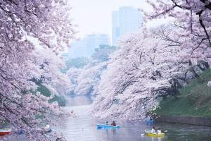 &Tokyo se presenta pisando fuerte para atraer a los viajeros occidentales