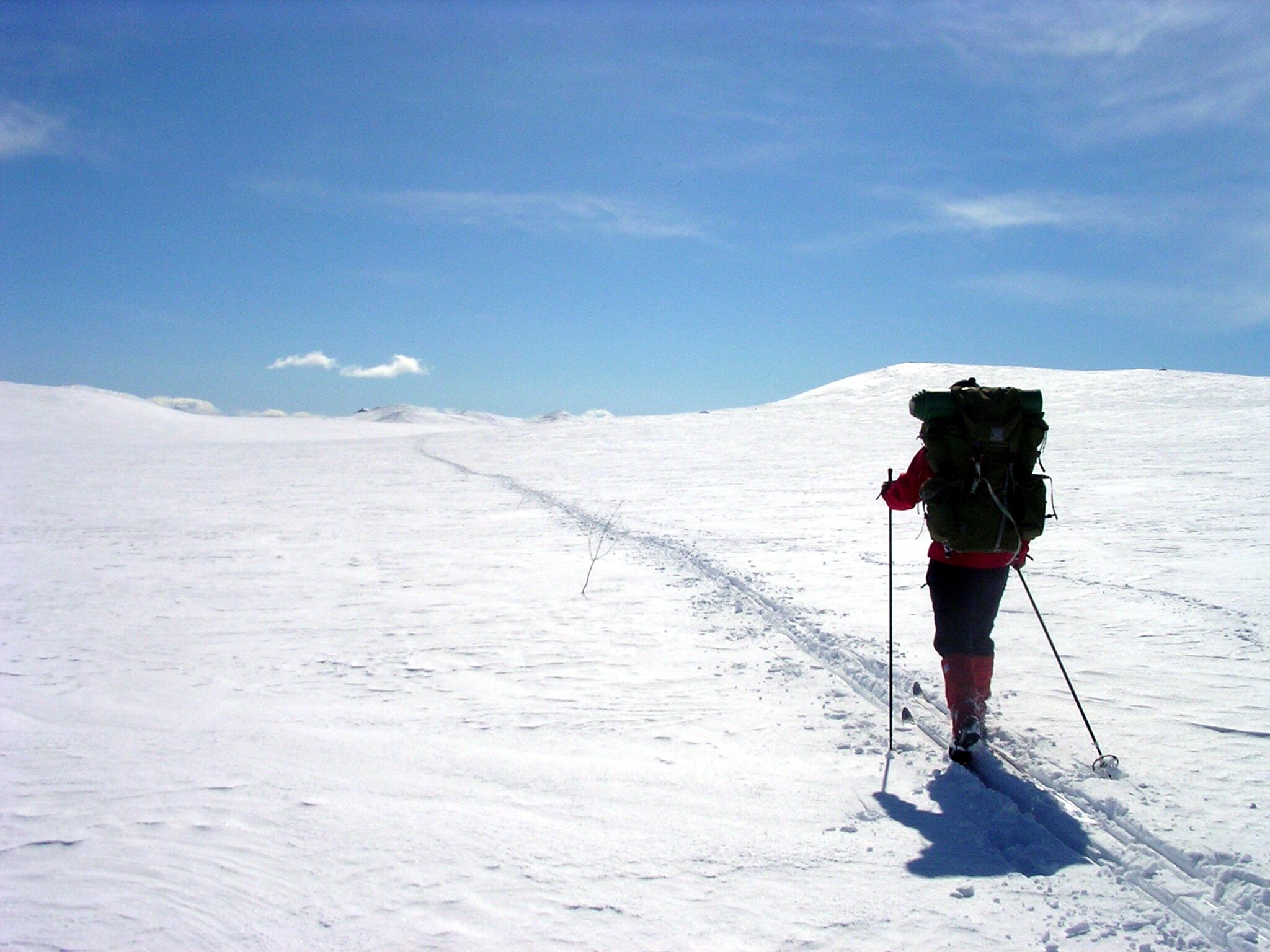ski-esquiar