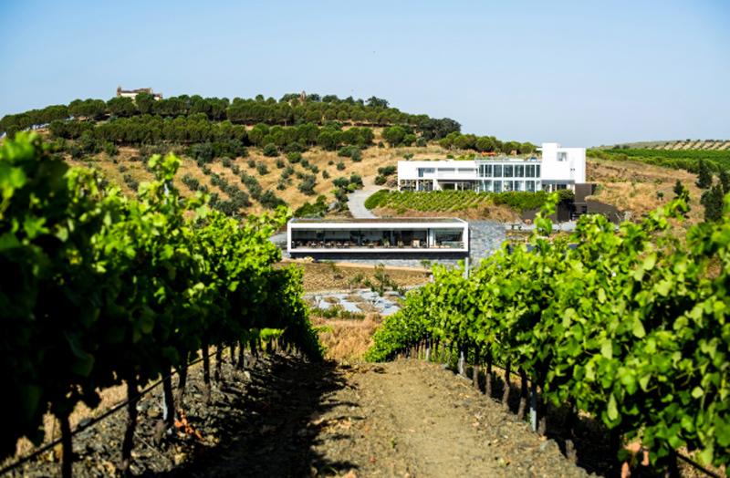 una de las principales bazas de esta regin portuguesa es su oferta enoturstica que aglutina diferentes rutas e idlicos