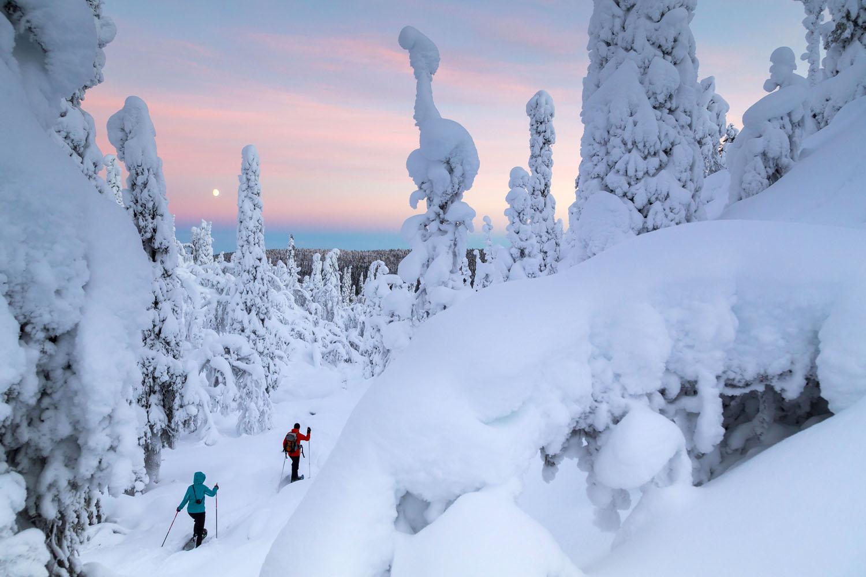 ©Kuva Metsahallitus Timo Veijalainen