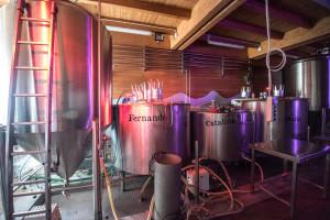 castillo-iscar-cervecera-artesana-la-loca-juana-9