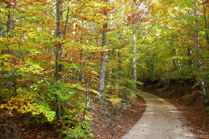 Rutas senderistas por la provincia de Burgos: fusión de naturaleza, patrimonio e historia